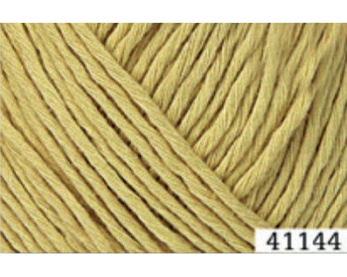 Пряжа Fibranatura CottonWood 41144