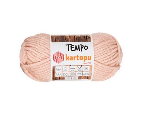 Пряжа KARTOPU Tempo 1873 пудра
