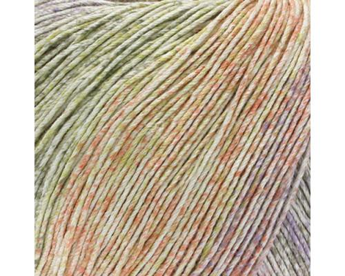 Пряжа Lanna Grossa SOLO LINO PRINT, цвет 156