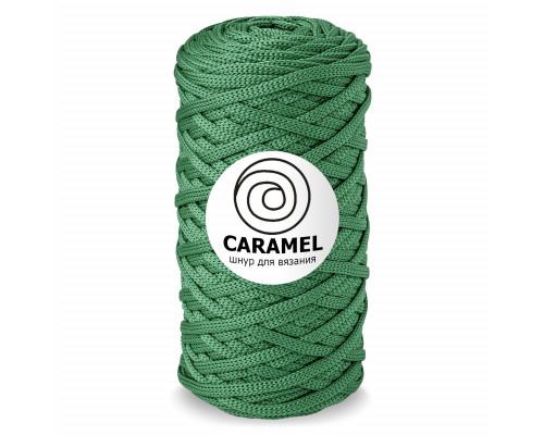 Полиэфирный шнур Caramel, цвет Алоэ
